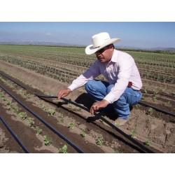 "Male Fitting 3/4 ""x Drip irrigation tape 16mm. 100 units"