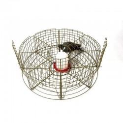 Jaula captura 8 departamentos palomas