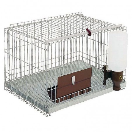 Rodent cage 1 department