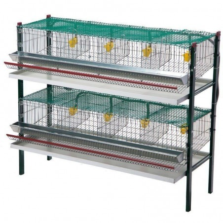 Quail battery cage 8 departments