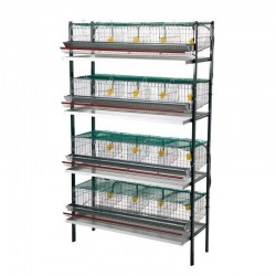 Quail battery cage 16 departments