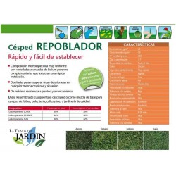 Repoblador grass seeds 1 Kg Fito