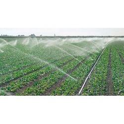"Aspersor agrícola sectorial 3/4"", 13 a 18 mts"