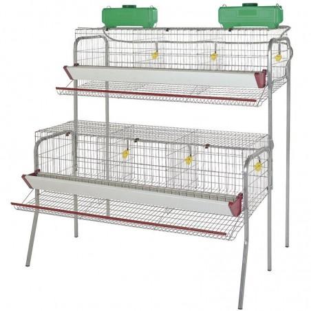 Batería para 30 gallinas ponedoras en 6 departamentos 155x110x150 cm
