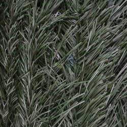 Premium Fine Leaf Artificial Hedge
