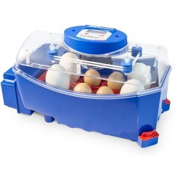 Automatic chicken incubator Lumia 8 eggs