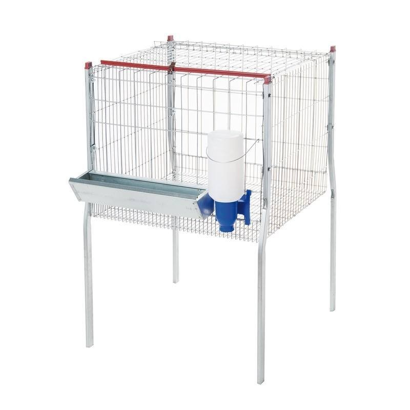 Cage for broilers 1 department