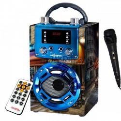 Radio bluetooth paris speaker with karaoke function