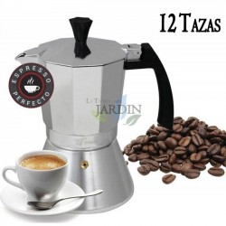 Induction coffee maker 12 cups