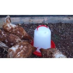 Bebedero pollos gallinas 3 litros rojo suinga