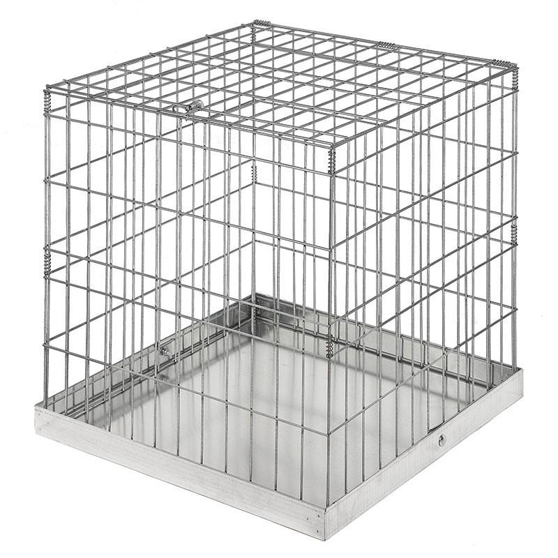 Jaula de exposición sin puerta aves 60x60 cm