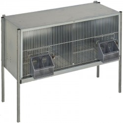 2-compartment pigeon cage with legs