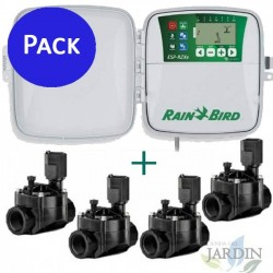 Rain Bird RZX 4 outdoor zones + 4 solenoid valves 100HV 24V 1 ""