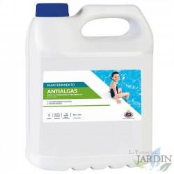 High quality swimming pool algae. 5 liters