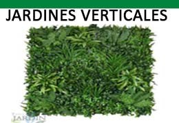 Recommendations for choosing a Vertical Garden