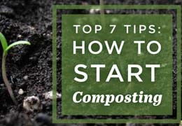 Top 7 tips to start composting