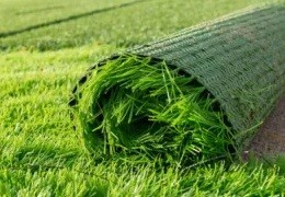 How to install artificial grass correctly